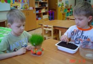 Дети наблюдают растения