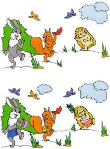 Заяц белка еж