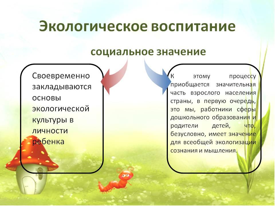 Схема экологического воспитания