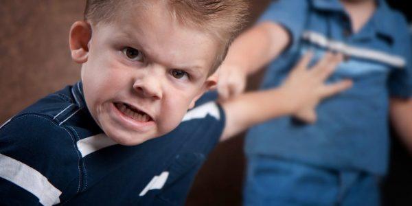 Особенности предупреждения эмоциональной агрессивности у детей