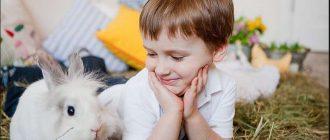 Мальчик с зайцем